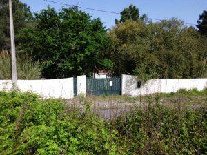Terreno e Casa em Salir de Matos Licitação 65832 euros 5