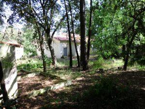 Terreno e Casa em Salir de Matos Licitação 65832 euros 2