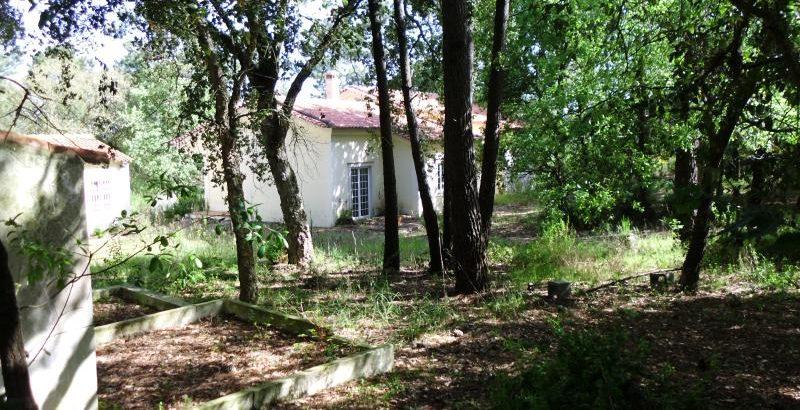 Terreno e Casa em Salir de Matos Licitação 65832 euros 135
