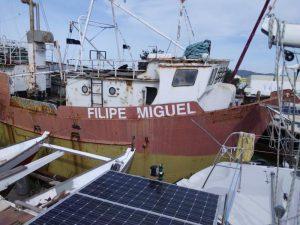 Embarcação 6 metros Licitação 2460 euros 5