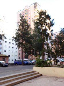 Apartamento T3 em Mem Martins Licite por 38226 Euros 5